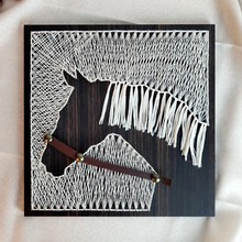Diy Craft Kits for Adults Horse Nail Line Paintings Wall Decor Manualidades Adultos Modern Home Decor Adult Decompression Toy