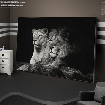 Black and White Lion Couple Picture Printed on Canvas 1