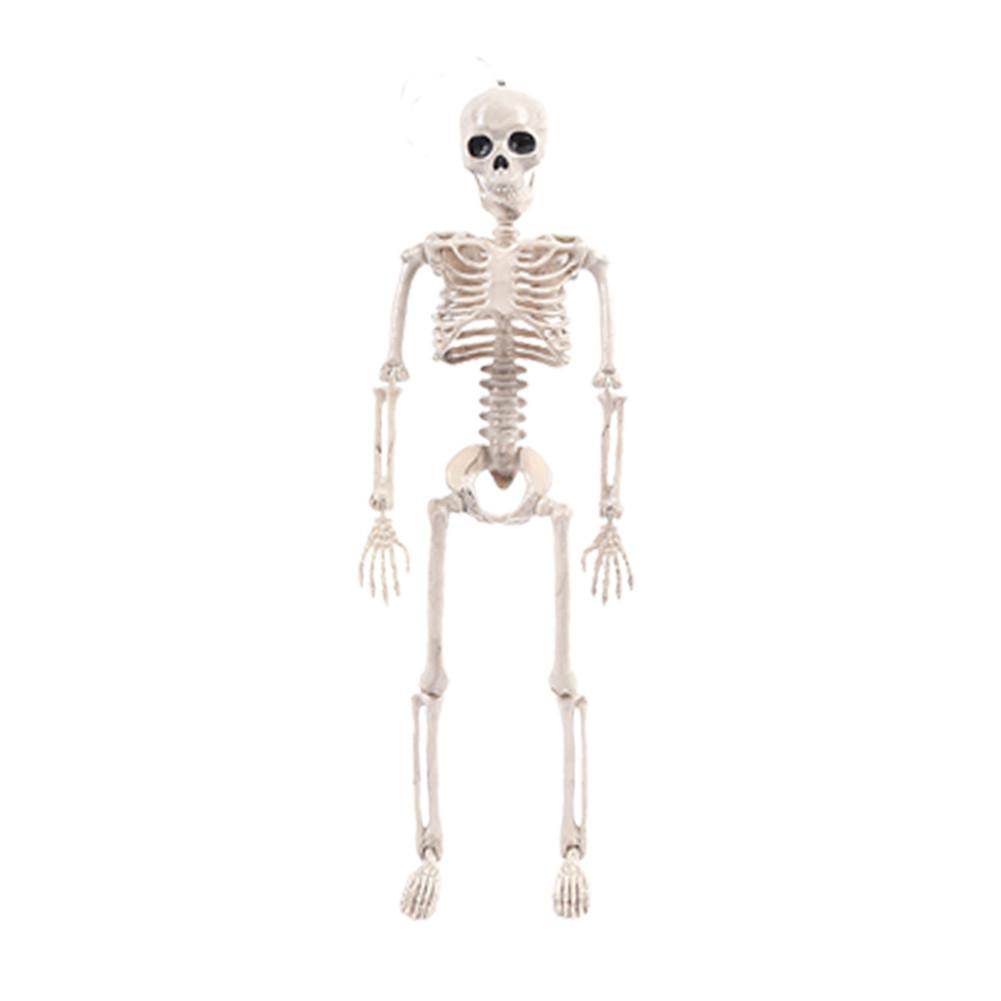 Halloween Decoration <font><b>Poseable</b></font> <font><b>Skeleton</b></font> Figure with Movable Joints Haunted House Props for Halloween Party Decorations image