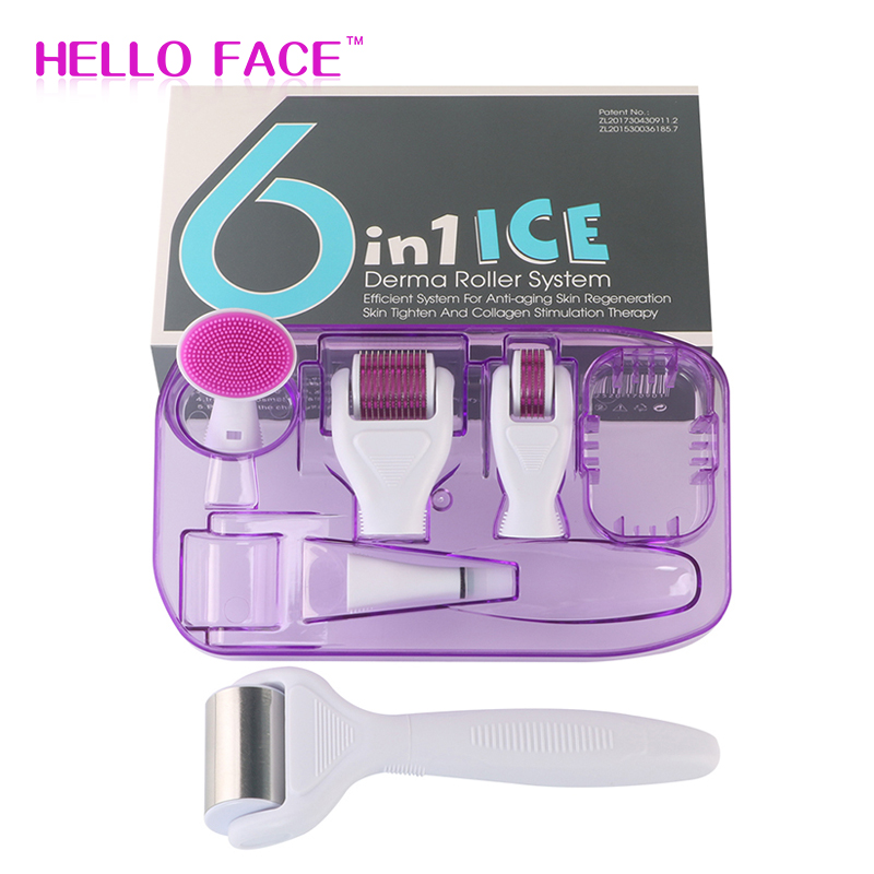 Ice Roller DRS Derma Roller 6 In 1 Microneedle Kits Microneedle Machine For Skin Care And Body Care