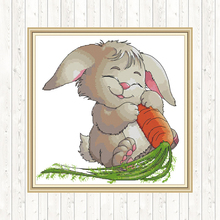 Rabbit Patterns Counted Cross Stitch Sets for Embroidery Kit 14CT DIY Handmade Needlework Set DMC 11CT Aida Printed Canvas