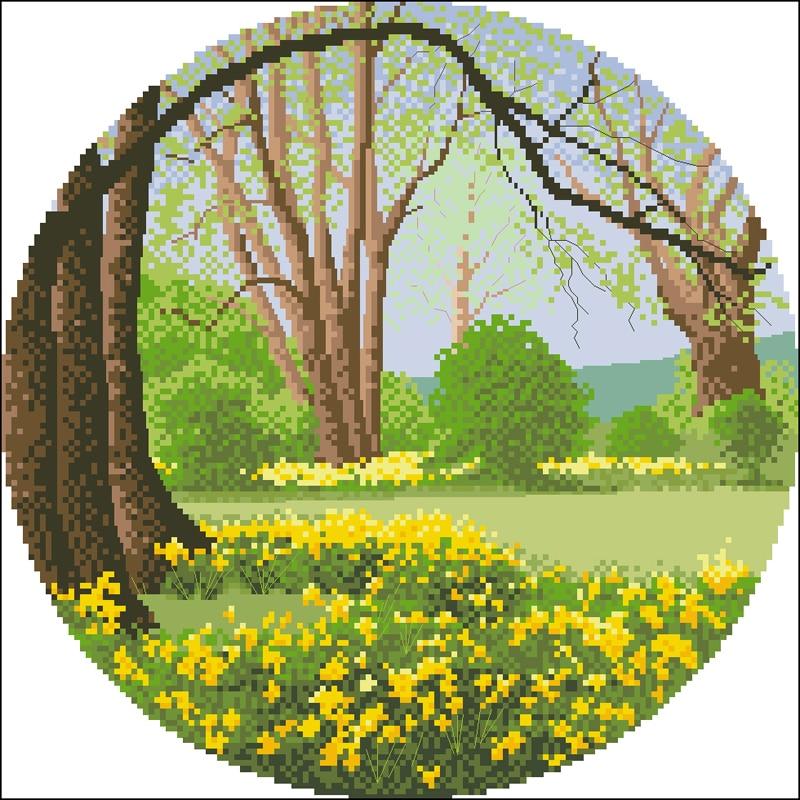 F-Daffodil Wood 水仙花灌木