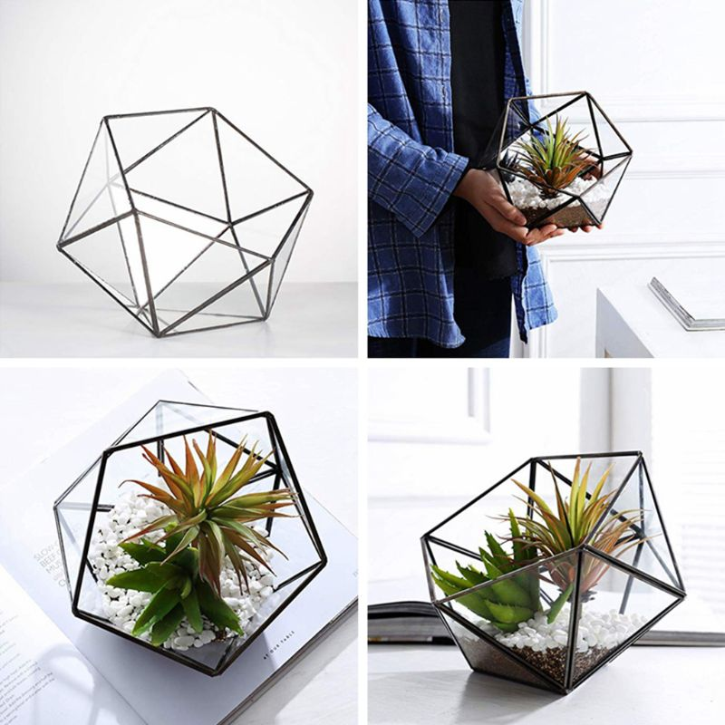 2020 New Glass Terrarium Storage Box Jewelry Holder,Glass Geometric Terrarium Tabletop Succulent Plant Box Planter Holder