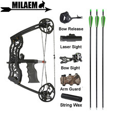 16inch Archery Mini Compound Bow Arrows Set 40lbs Bowfishing 23inch Arrows Right Left Hand Hunting Shooting Accessories