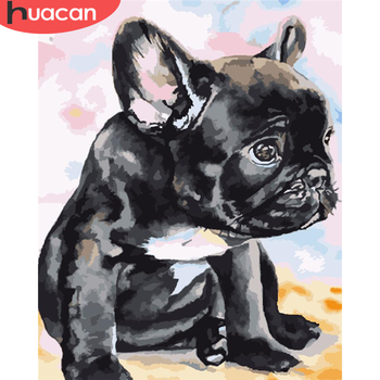 HUACAN Paint By Number Dog Drawing On Canvas Gift DIY Pictures By Numbers Animal Kits Hand Painted Painting Art Home Decor