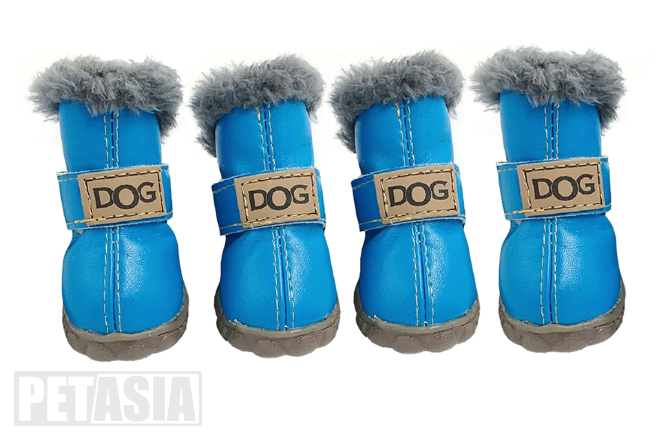 winter dog boots blue