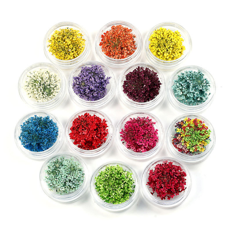 20pcs/jar Dried Flowers Nail Decorations Jewelry Natural Floral Dry Flower 3D Nail Art Designs Polish DIY Manicure Accessories