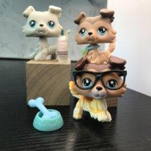 Pet Shop 3 adet Collie köpek çok nadir 7 adet Mini aksesuarları