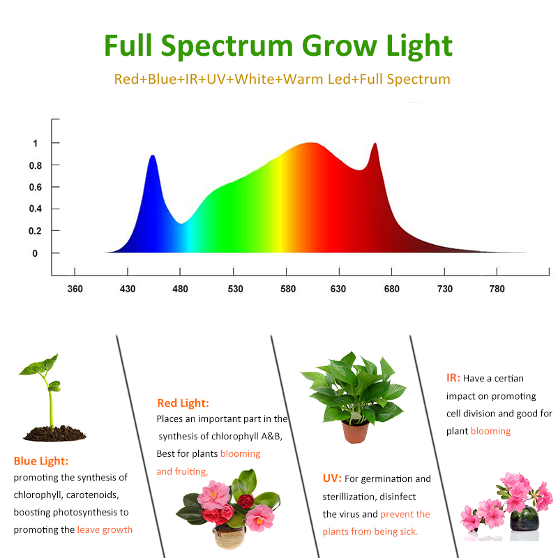 Image 3 - LED Grow Light Full Spectrum 2000W 1000W Indoor Plant Growing Lamps Tents Fitolamp Fito Led Seeding Flowers Greenhouse Garden-in LED Grow Lights from Lights & Lighting