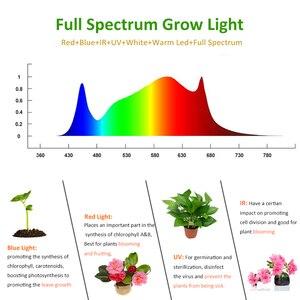 Image 3 - Luz LED de cultivo de espectro completo, 2000W, 1000W, lámparas de cultivo de interior, tiendas de campaña, Fito, invernadero de flores, jardín