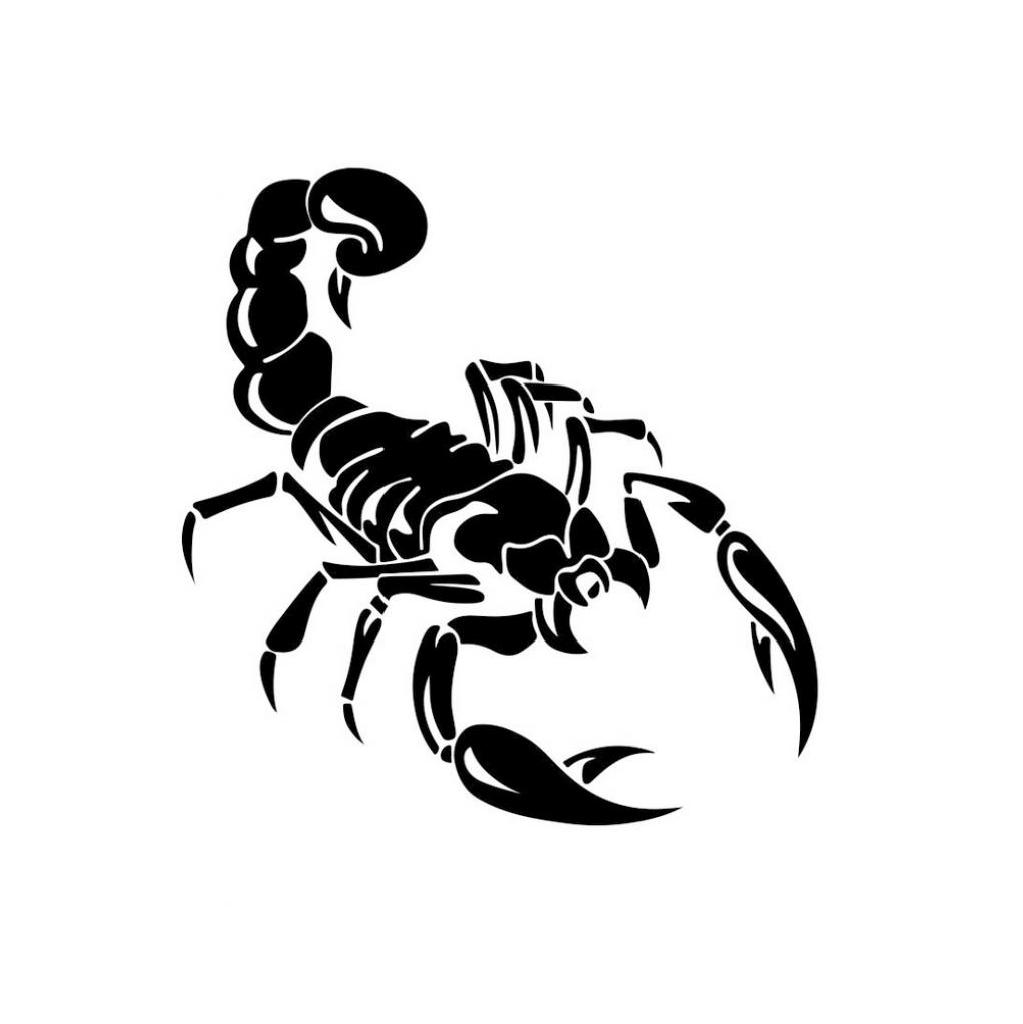 Wall Stickers Black Scorpion Home Decor Wall Decal Sticker DIY Mural Art Decal Self Adhesive Removable PVC Wall Paper Room Decor