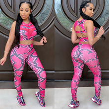 ANJAMANOR Snake Skin Mesh Spliced Sexy 2 Piece Set Women Crop Top and Leggings Pants Sporty Sweatsuit Womens Tracksuits D42-CD24