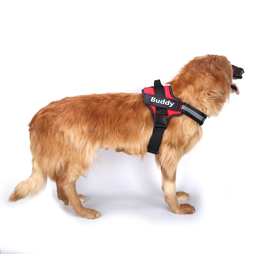 Cablaggio Del Cane Traspirante Regolabile con nome Personalizzato