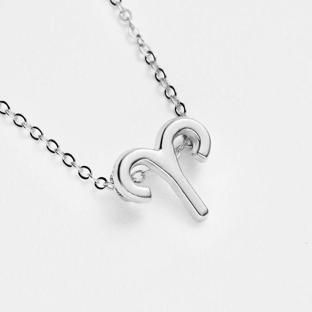 Horoscope sign necklace 4
