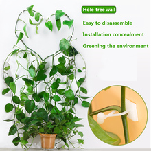 50 pcs Invisible Wall Vines Fixture Wall Sticky Hook Vine Plant Fixer plant climbing wall clip plant climbing wall fixture