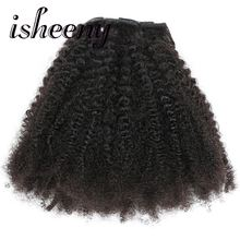 Brazilian Remy Human  Clip Hair