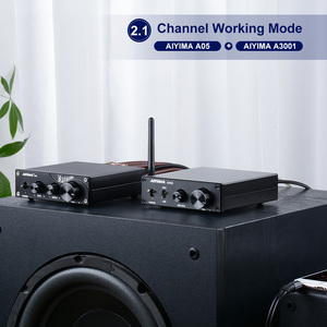 Image 5 - AIYIMA Amplificador de Subwoofer TPA3255, 300W, amplificador de potencia Digital HIFI Mono, Clase D, sonido para el hogar, Versterker NE5532 OP AMP
