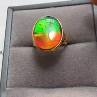 B216 Fine Jewelry Real 925 Steling Silver s925 100% Natural Ammonite Gemstones Canada Origin Female Fine Rings Christmas Gift