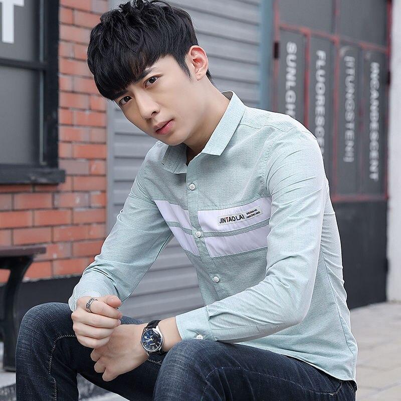Slim Men's Shirt Long-sleeved Casual Male Handsome Formal Wear Professional Work-free Ironing Anti-wrinkle Spring Shirt
