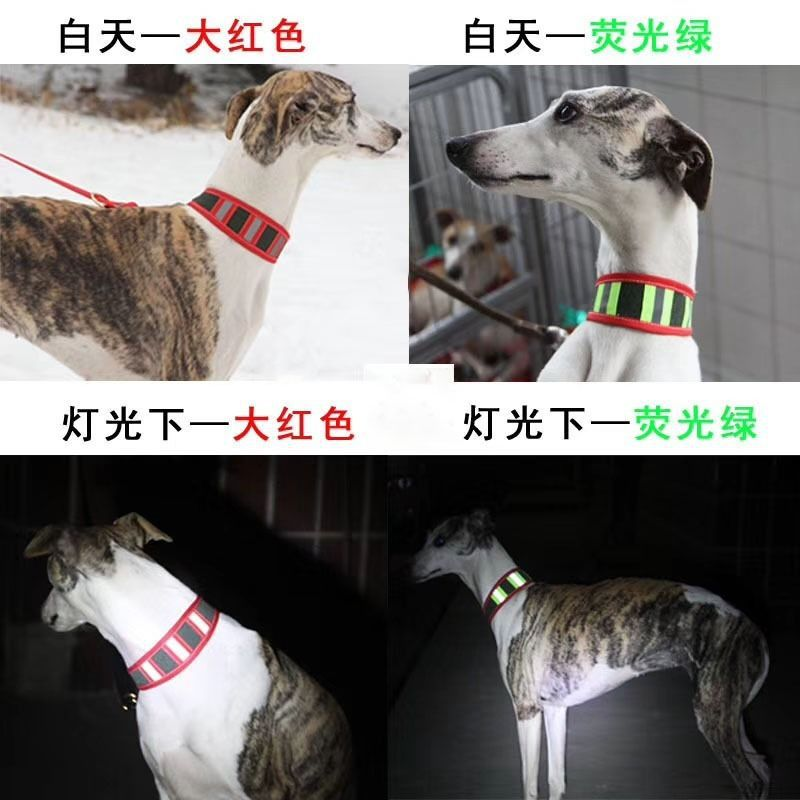Reflective Collar Greyhound Gree Whippets Fine Dog Pet Dog Collar Bandana Game Hunting For Reflective Neck Ring