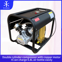 4500PSI Double Cylinder PCP High Pressure Air Compressor with Double Filter Oil Water Separator for Air Rifle Gun Tank Diving