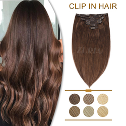ZURIA Lace Clip In Human Hair Extensions 16