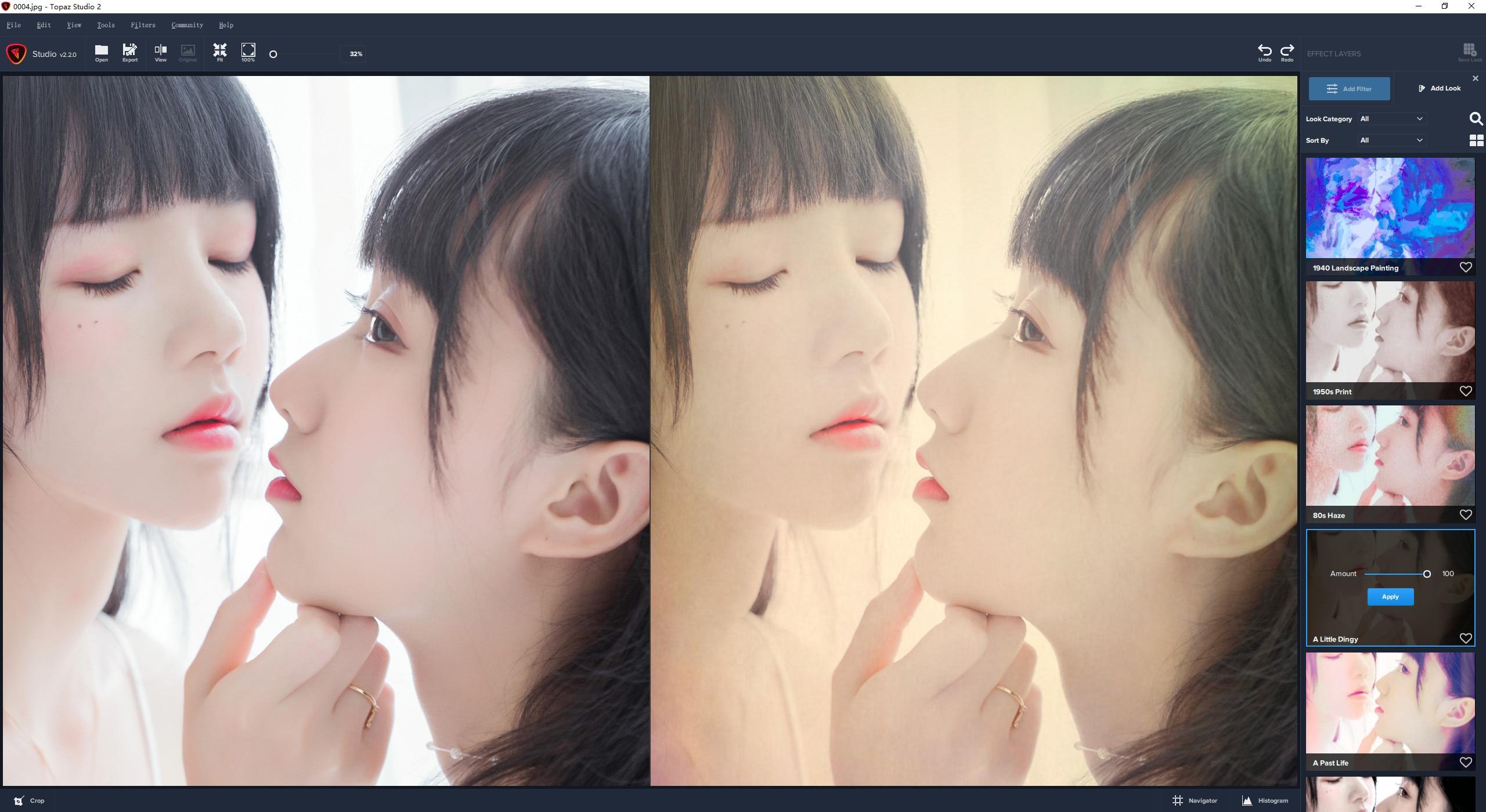 VIP资源-创意照片编辑软件 Topaz Studio 2.3.2 WIN 中文汉化版(5)