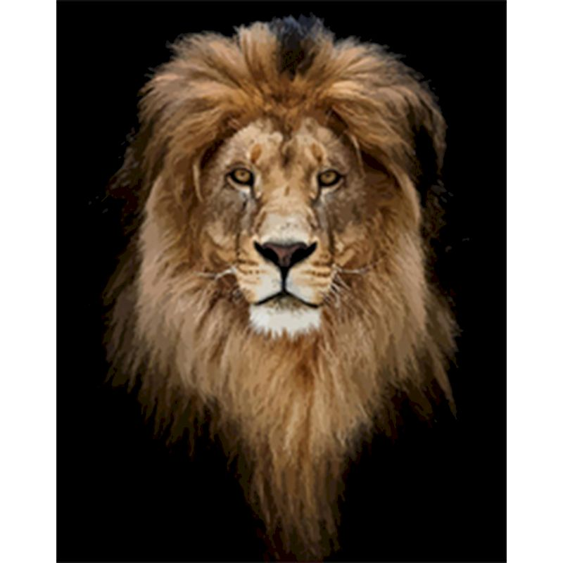 RUOPOTY Paints By Numbers Animals 40x50cm Pictures Oil Golden lion head Gift Acrylic Coloring By Numbers Canvas Wall Set For Art-0