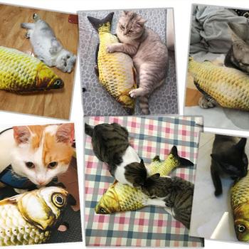 20 30 40 cm symulacji ryby pluszowe zwierzęta kot zabawki karpia trawa karpia poduszki pluszowe zabawki śmieszne zwierzęta zwierząt zabawki tanie i dobre opinie Chew zabawki Other cats