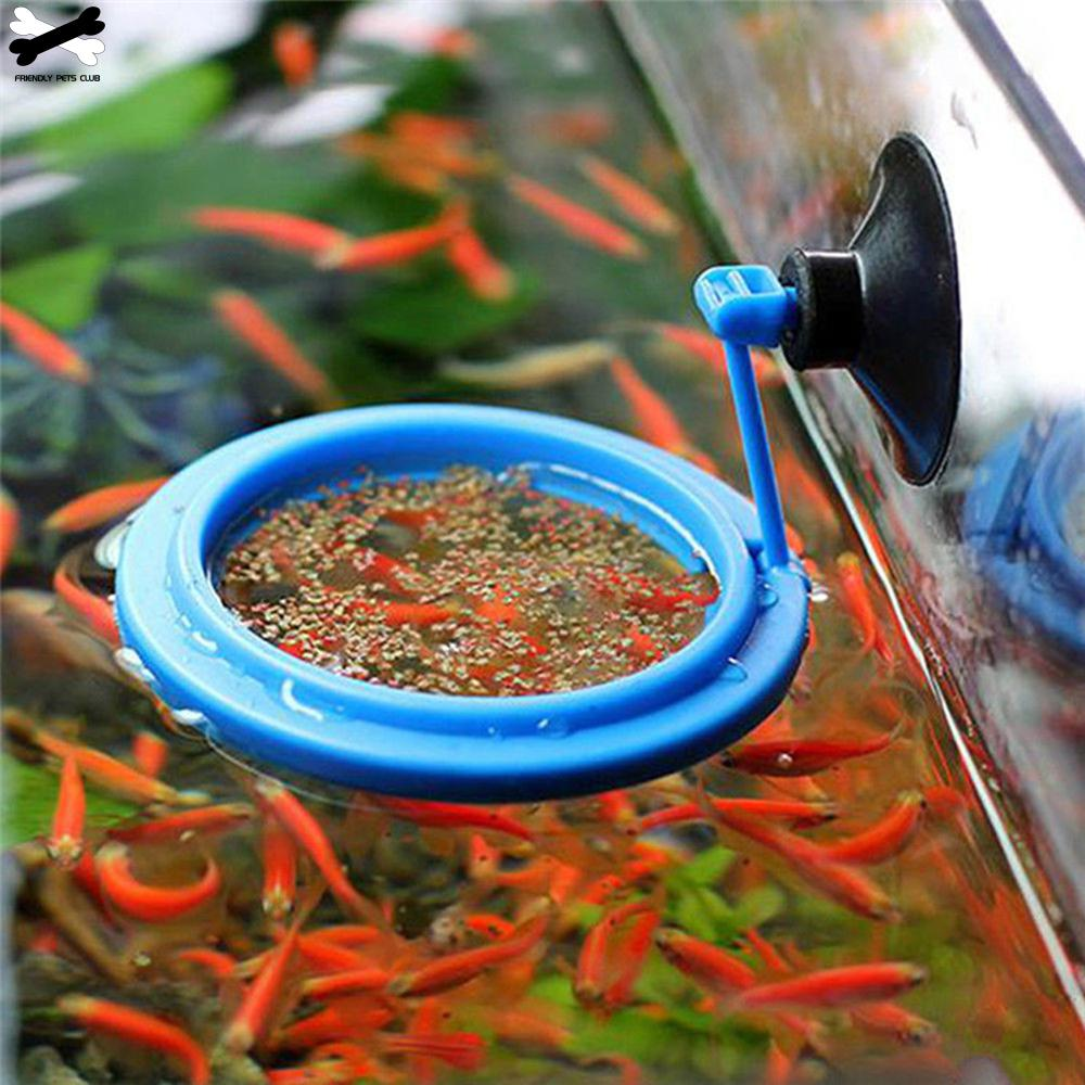 Feeding-Ring Circle-Accessory Floating Food-Tray Fish-Tank-Station Buoyancy-Suction-Cup