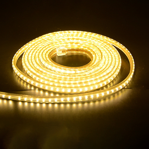 Image 2 - 超高輝度 Led ストリップ 220 12V IP67 防水 120 Led/M Smd 3014 柔軟な光 + 電源プラグ屋外ガーデンテープロープ