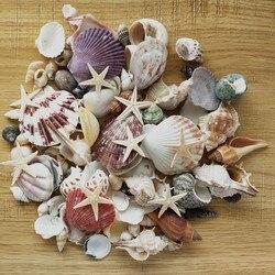 100 шт, смешанные морские раковины, свадебные украшения, пляжные темы, вечерние ракушки, украшения для дома, аквариум, свечи для изготовления ...
