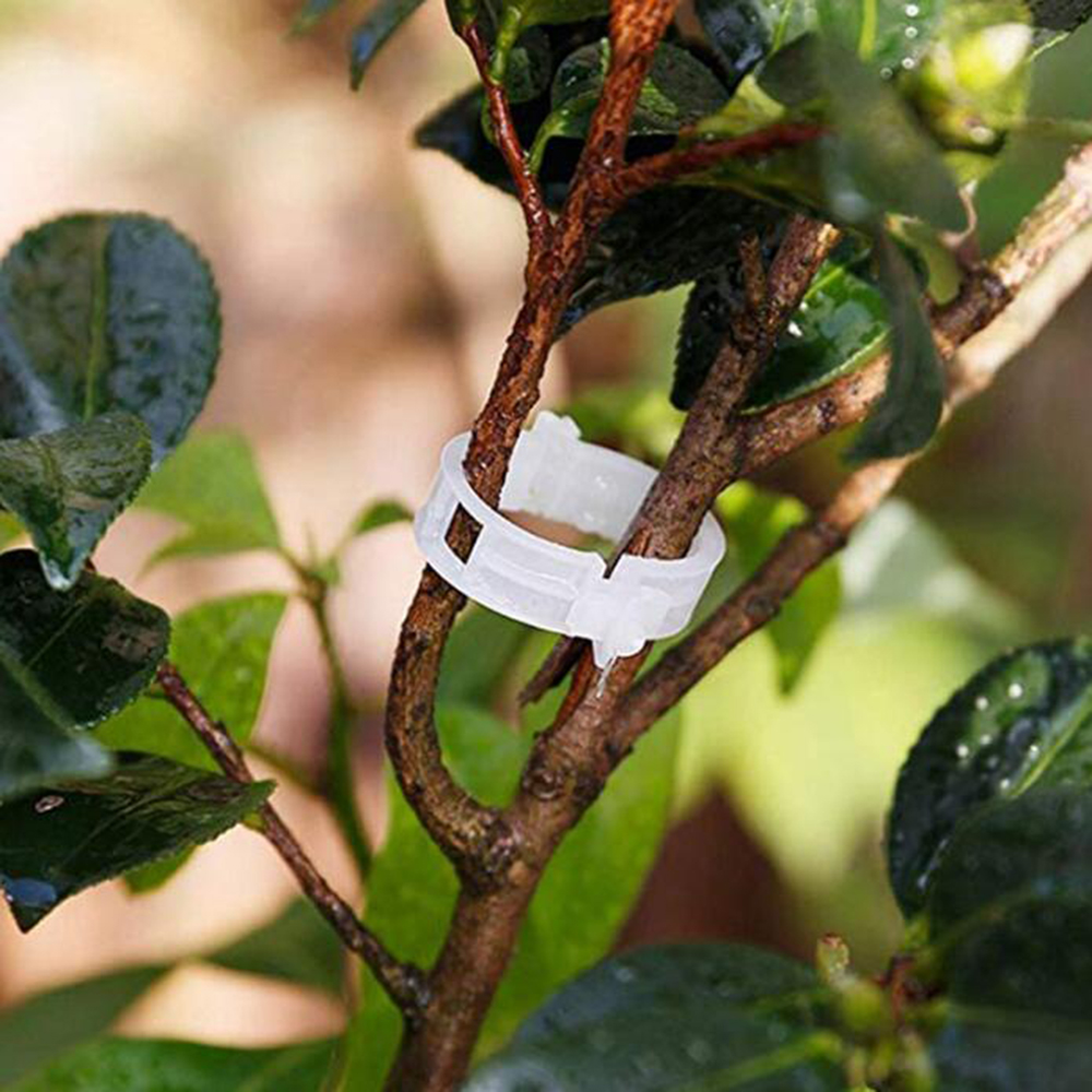 Пластиковые зажимы для поддержки растений, 50/100 шт., 30 мм