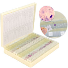 100 PCS Human Tissue Sections Histology Prepared Specimen Microscope Slides with Plastic Box