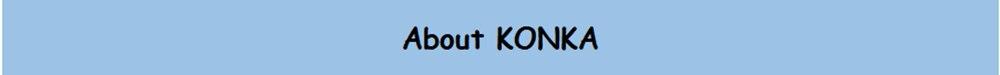 About KONKA_副本
