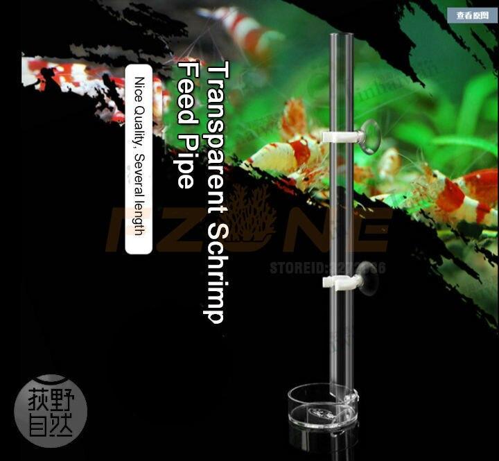 Peixes de aquário comida acrílico cristal camarão