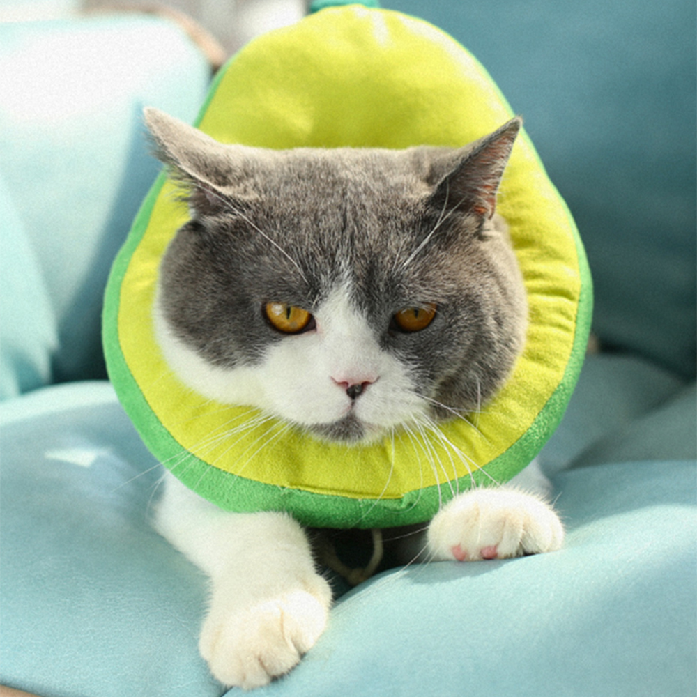 Adjustable Bread Shape Pet Protective Collar Dog Cat Neck Cone Recovery Cone Anti-Bite Surgery Wound Healing Cat Dogs Collar