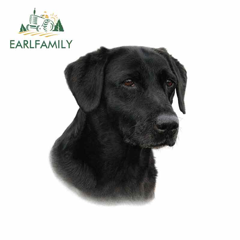 EARLFAMILY 13cm x 11.4cm for Black Labrador Funny Car Stickers Vinyl Sunscreen RV VAN Fine Decal JDM Car Accessories Graphics(China)
