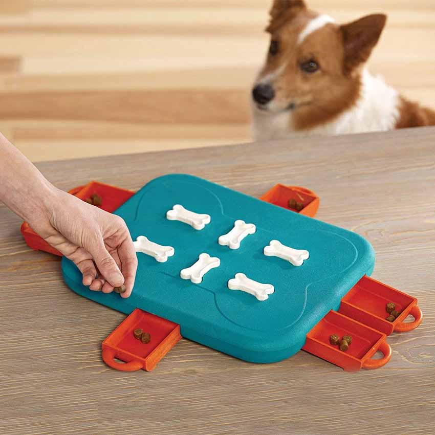 Casino Treasure Hunt Puzzle Food Spill Toy For Dog