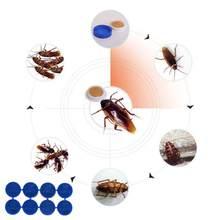 Appât anti-cafards, médicaments anti-cafards, non toxiques, contrôle des insectes, sécurité, écologique et efficace