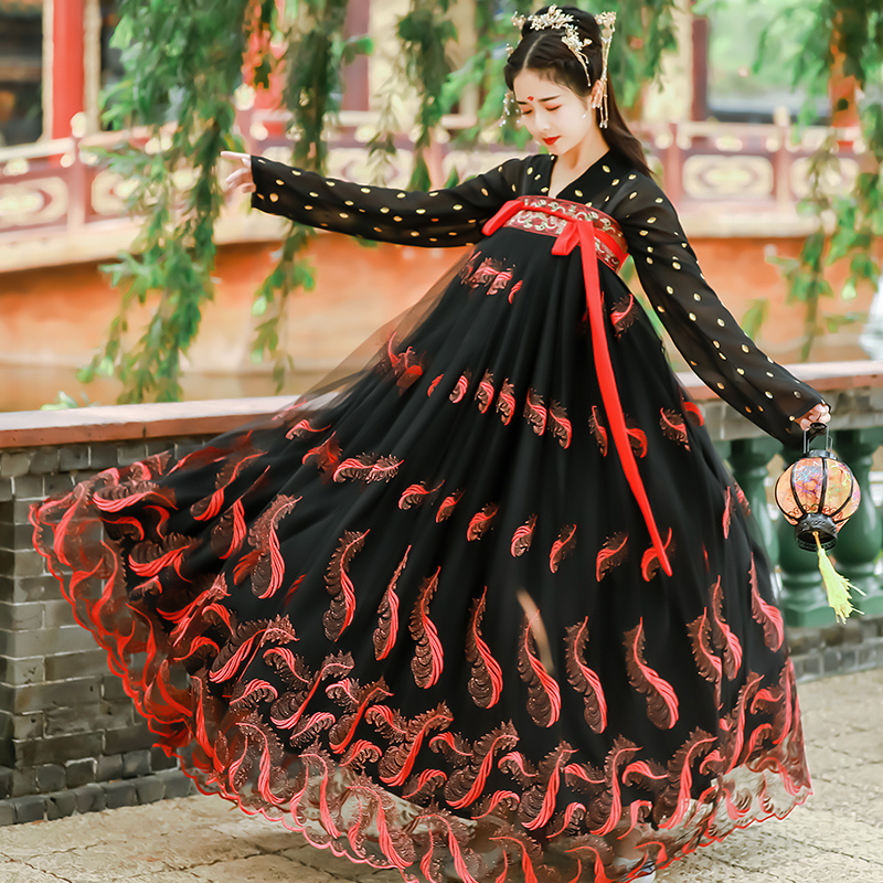 Ancient Fairy Hanfu Dress Traditional Chinese Style Dance Costumes Embroidered Folk Tang Suit Elegant Performance Clothes DL4994