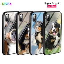 Black Cover Bernese Mountain Dog for iPhone X XR XS Max for iPhone 8 7 6 6S Plus 5S 5 SE Super Bright Glossy Phone Case black cover japanese samurai for iphone x xr xs max for iphone 8 7 6 6s plus 5s 5 se super bright glossy phone case