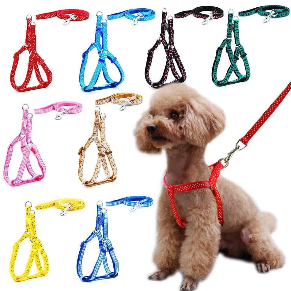 Pettorina per cani di piccola taglia guinzaglio regolabile gilet collare cucciolo Outdoor Walking Chihuahua Terier Schnauzer 1