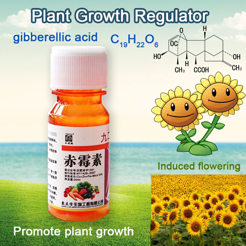 20ml Concentrate Gibberellic Acid Liquid 920 Plant Growth Regulator Break Sleep Fertilizer Increase Production For Farm Garden