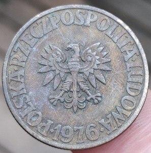 24 мм, 100% натуральная копилка, оригинальная коллекция