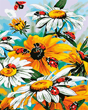 Painting By Numbers Bright Colours Daisy Wild Flowers Ladybirds