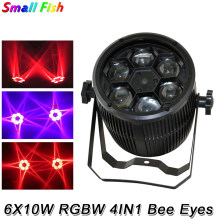 2020 Gratis Verzending Hot Sales 6X10W Rgbw 4IN1 Led Bee Ogen Beam Par Licht Voor Stage Dj Disco Party Club bar Laser Effect Verlichting(China)