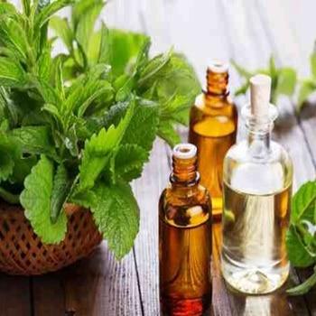 цена на DIY hand soap skin care material natural health mint essential oil fresh 10ml essential oil