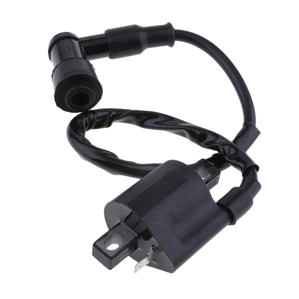 1 Pcs Black Ignition Coil With CDI For Suzuki Quadmaster LT-A50 LTA50 1983-1984 2019 New