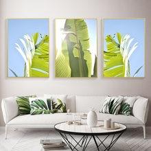 Скандинавские красочные ботанические картины на холсте банановые